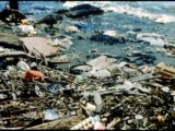 Environmental pollution conversation